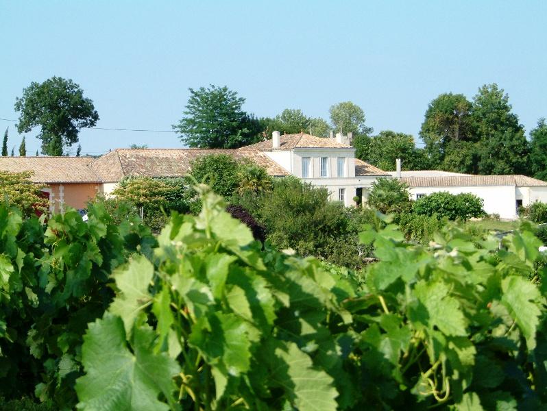 AOC Côtes de Bourg