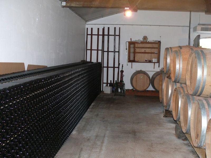 Beau Vignoble sur un très joli terroir de l'AOP Lalande Pomerol