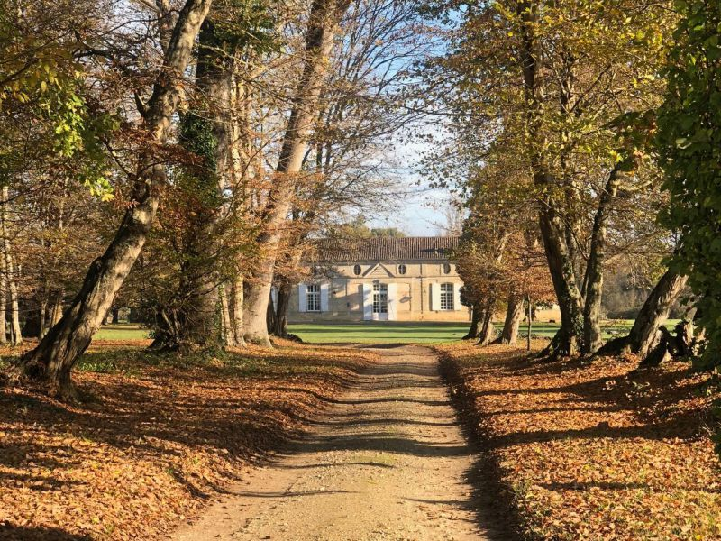 Exceptionnel Château 17ème siècle, parc, vignoble