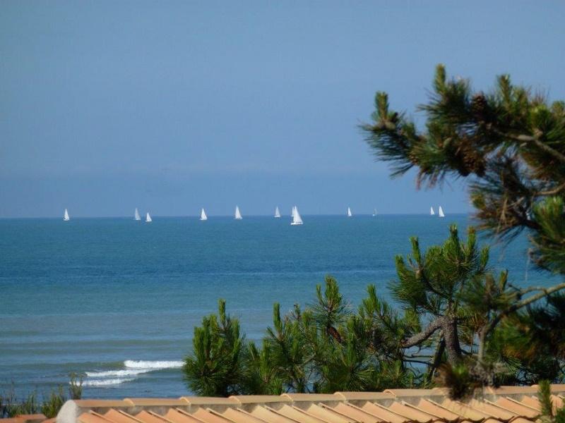 Ile de Ré, la mer à proximité.