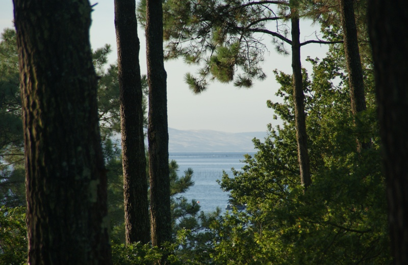 Villa de Famille avec vue Bassin PRESQU'ILE DU CAP FERRET