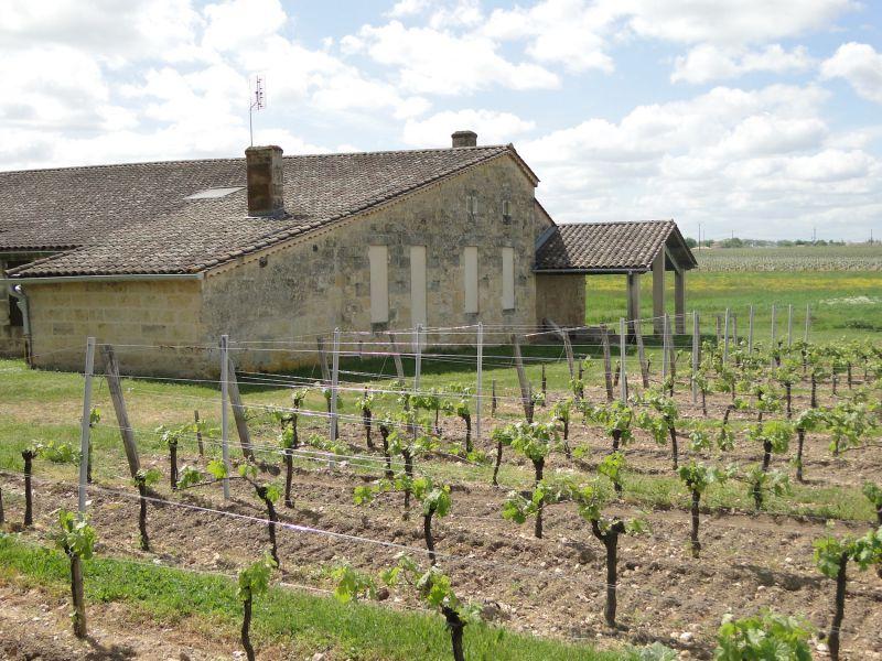 Lalande de Pomerol, grands terroirs