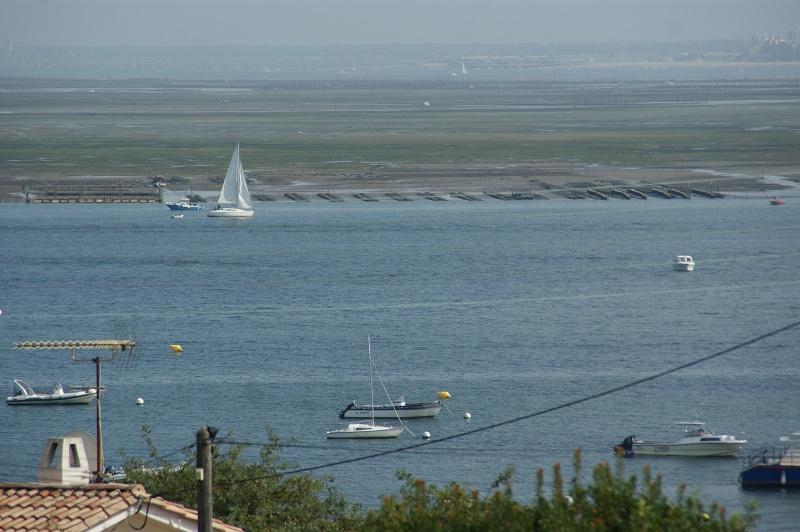 Une vue imprenable sur le Bassin.