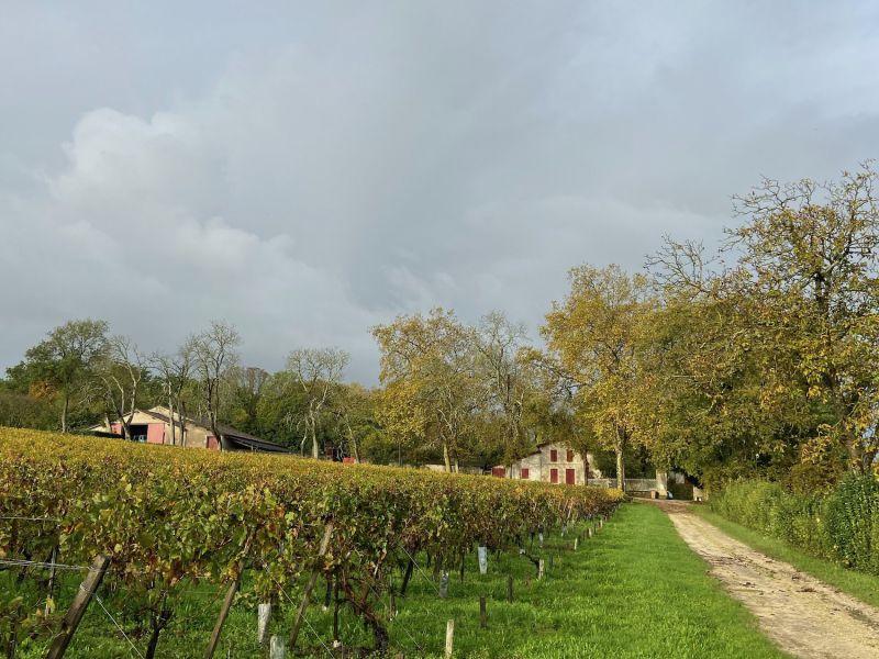 Demeure de charme aux portes de Bordeaux, parc, vignoble 60 hectares