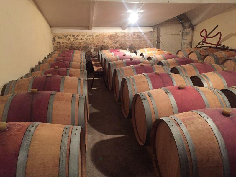 Vignoble de 8 hectares