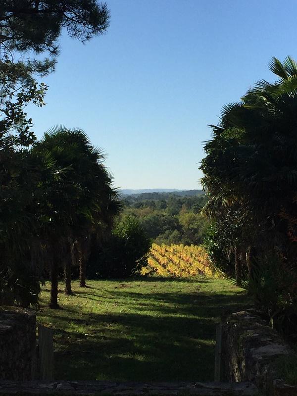 charmante propriété Côtes de Castillon, à rénover