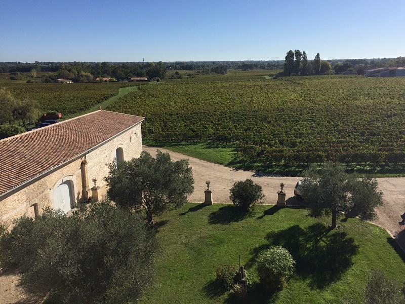 Ravissante chartreuse Côtes de Blaye, entourée d'un beau vignoble