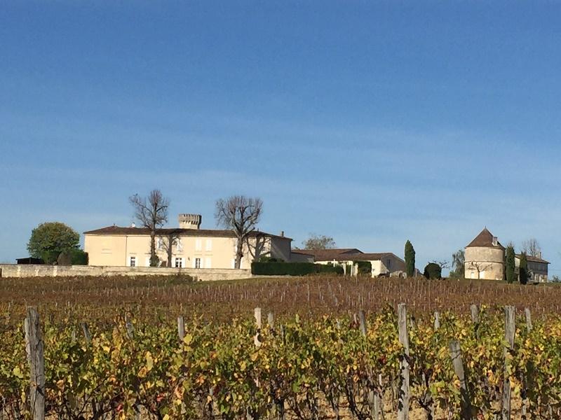 Proche de Bordeaux, domaine de 70 ha avec belle maison de maître