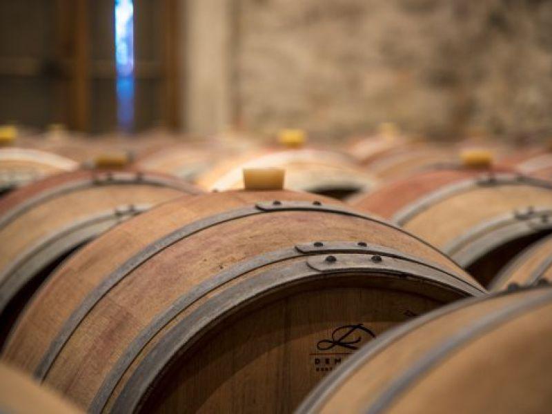 Côtes de Castillon, excellent terroirs, domaine rentable