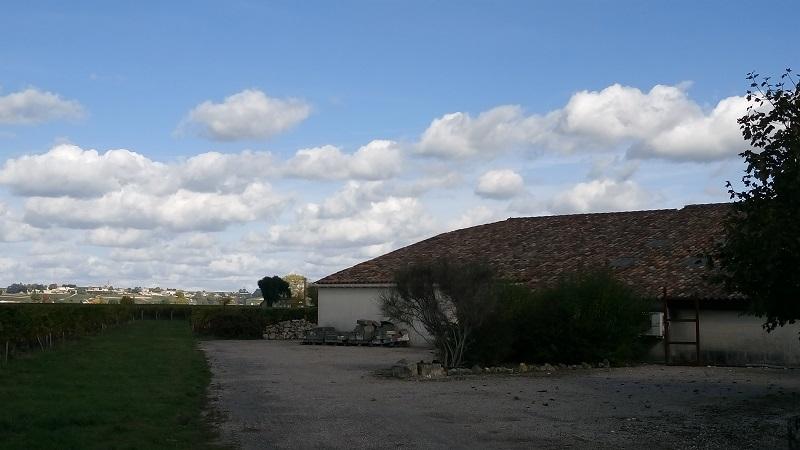 Petite Propriété en AOC Saint Emilion Grand Cru
