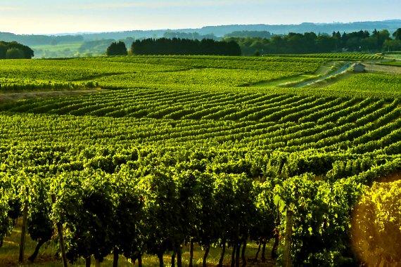 Rustmann associes agence immobiliere de prestige villa de luxe vignobles bordelais cap - Propriete de prestige paris xi feau ...